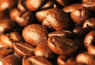 utah coffee beans
