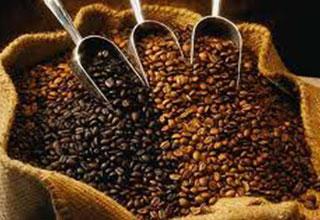Gourmet coffee roasters Utah