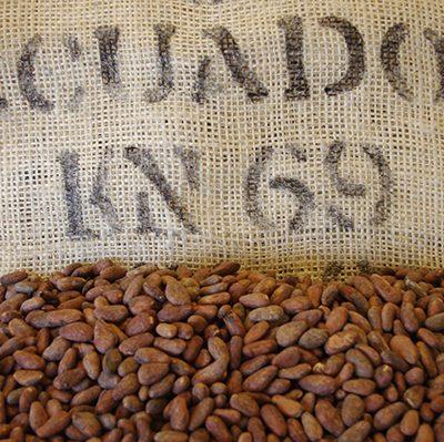 Arriba Nacional Cacao Beans   Ecuador