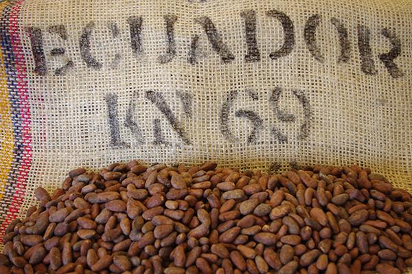 Arriba Nacional Cacao Beans | Ecuador